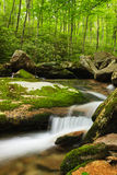 Mountain Stream Blue Ridge Parkway North Carolina Royalty Free Stock Images