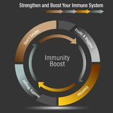 Boost and Stregthen Your Immune System Chart. An image of a Boost and Stregthen Your Immune System Chart Stock Illustration