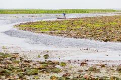 Boot auf beträchtlichem See in Thailand Lizenzfreie Stockbilder