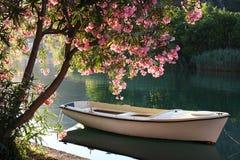 Boot auf dem Fluss Lizenzfreie Stockfotos