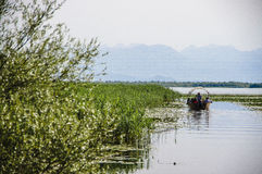 Boot auf dem See stockfotografie
