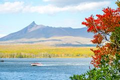 Boot auf dem See im bunten Herbstsaisonsee in Nationalpark Onuma im Herbst und Berg Komagatake Komagatake vulkanisch bei Hak stockfotos