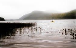 Boot auf einem nebeligen Echosee im naher Acadia-Nationalpark in Maine Lizenzfreie Stockfotos