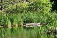 Boot auf Teich Stockfotos