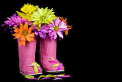 Boot Bouquet Royalty Free Stock Image