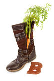Boot with carrot for Dutch Sinterklaas Royalty Free Stock Image