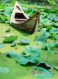 Boot, das voll auf einem Teich von Lotos stillsteht Lizenzfreies Stockfoto