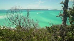 Boot, das zur whitsundays Insel in Australien beschleunigt stock video footage