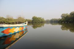 Boot in de binnenwateren in het midden van mangroven stock foto's