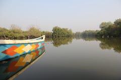 Boot in den Stauwassern unter Mangroven Stockfotos