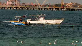 Boot die van de Politie van Doubai de kust naderen stock videobeelden