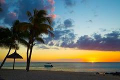 Boot en palmen bij zonsondergang op de kust van Indische Oceaan van Mauri stock afbeeldingen