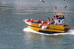 Boot für Fische stockfotos
