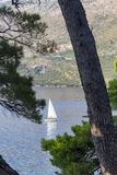 Boot gestaltet durch Bäume lizenzfreie stockfotografie