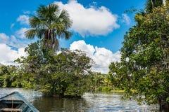 Boot im Fluss im peruanischen Amazonas-Dschungel bei Madre de Dios Stockbild