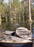 Boot im Sumpf Stockfotografie