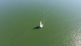 Boot met witte zeilen die op het overzees varen stock videobeelden