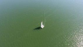 Boot mit den weißen Segeln, die auf das Meer segeln stock video footage