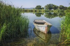 Boot nahe der Flussbank an einem sonnigen Morgen stockfotografie