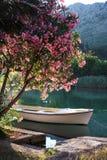 Boot op de rivier Stock Afbeeldingen