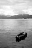 Boot op Donau stock foto's