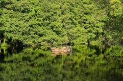 Boot op het meer Stock Foto