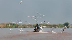 Boot op inlemeer myanmar Royalty-vrije Stock Fotografie