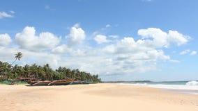 Boot op tropische kust stock video