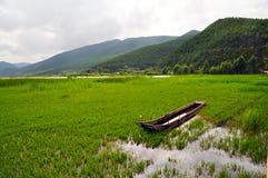 Boot op Weide met Rich Water Stock Foto
