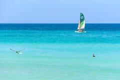 Boot, Pelikan und blaues Meer in Varadero stockfoto