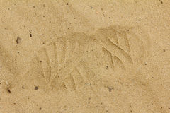 Boot print in the sand Stock Image
