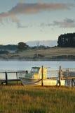 Boot in riet door rivierbank Royalty-vrije Stock Foto's