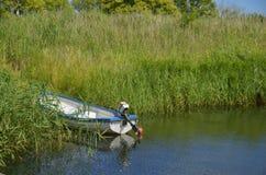 Boot in Riet in Kivik, Zweden Royalty-vrije Stock Afbeeldingen