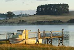 Boot in riet op rivierbank Stock Foto