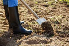 Boot shoveling ground in the garden Stock Photography