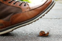 Boot and snail Royalty Free Stock Image