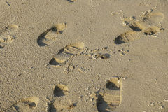 Boot tracks. Tracks of rubber boats in the wet sand Royalty Free Stock Image