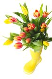 Boot with tulips Stock Image