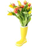 Boot with tulips Stock Photography