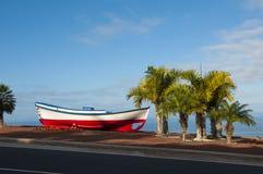 Boot und Palmen Lizenzfreie Stockfotos