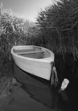 Boot unter Schilfen Stockbild