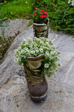 Boot used as a planter Royalty Free Stock Photography