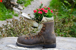 Boot used as a planter. An old mountain boot used as a planter Stock Photo