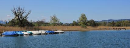 Boote auf dem Ufer von See Pfaffikon Stockbilder