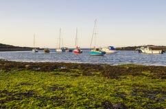 Boote auf ihren Liegeplätzen neben Herzmuschel-Insel im natürlichen Gezeiten- Hafen bei Groomsport in Co unten, Nordirland mit Be Stockbilder