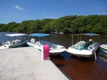Boote bereit zu den Touristen Stockbilder