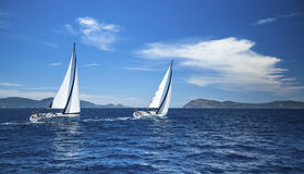 Boote in der Segelnregatta luxus lizenzfreie stockfotografie