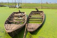 Boote, die nahe Reisfeldern mit Phnom Penh im backgroun schwimmen Stockbilder