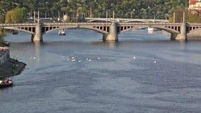 Boote, die unter der Stadtbrücke ankommen stock video footage
