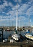 Boote im Francisco-Jachthafen Stockbild
